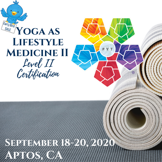 Yoga as Lifestyle Medicine Certification